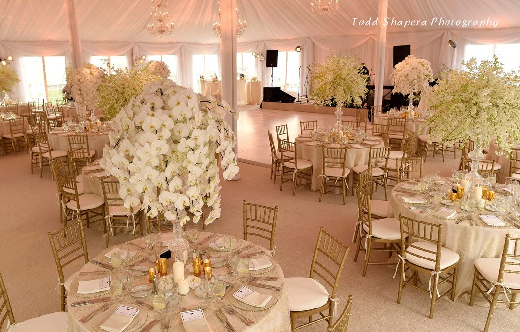 Xquisite events ny nj ct party planning exquisite event design junglespirit Images